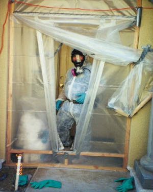 mold-remediation-containment-area.jpg